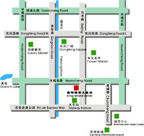King World Hotel Map